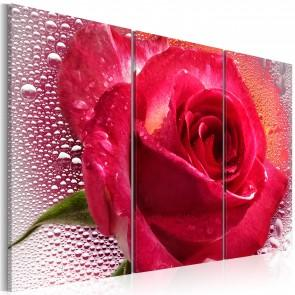 Quadro - Lady Rose - Triptych Erroi