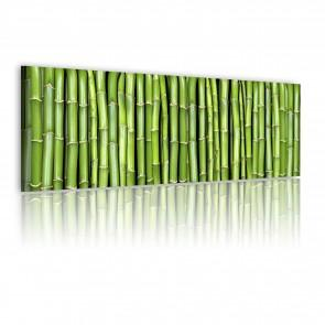 Quadro - Canvas Print - Bamboo Wall 120x40cm Erroi