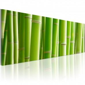 Quadro - Canvas Print - In A Bamboo Bush 120x40cm Erroi