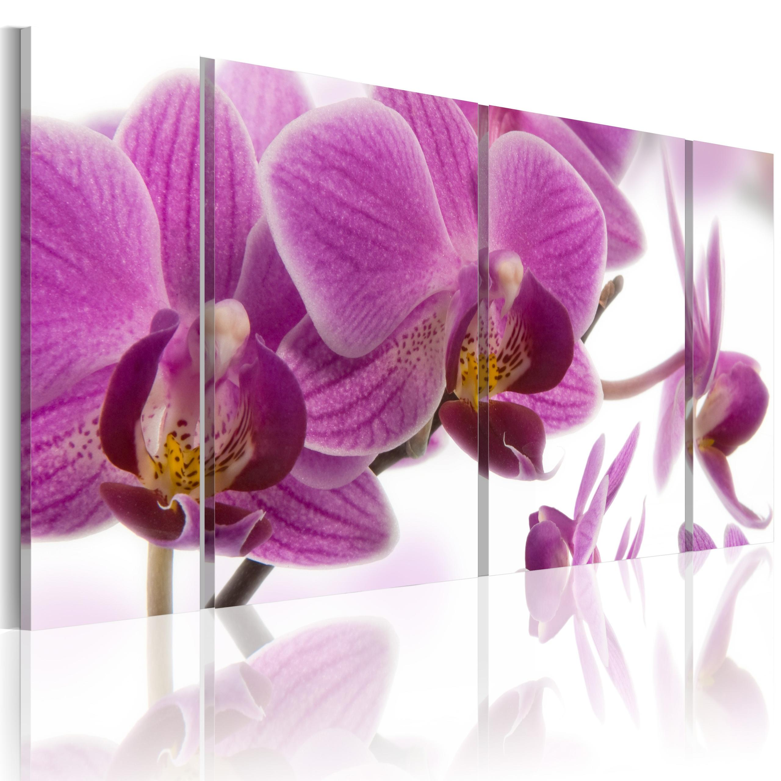 Quadro - Marvelous Orchid 120X60Cm Erroi