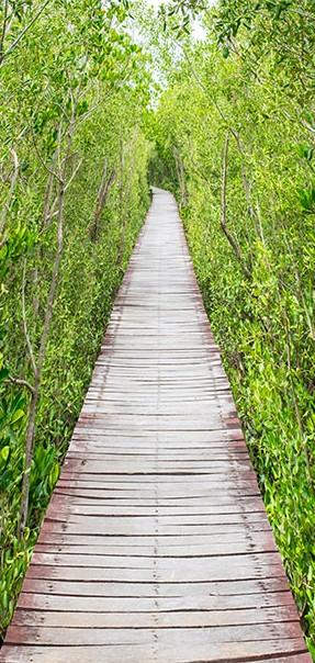 Carta Da Parati Fotomurale Per Porta - The Path Of Nature 70x210cm Erroi