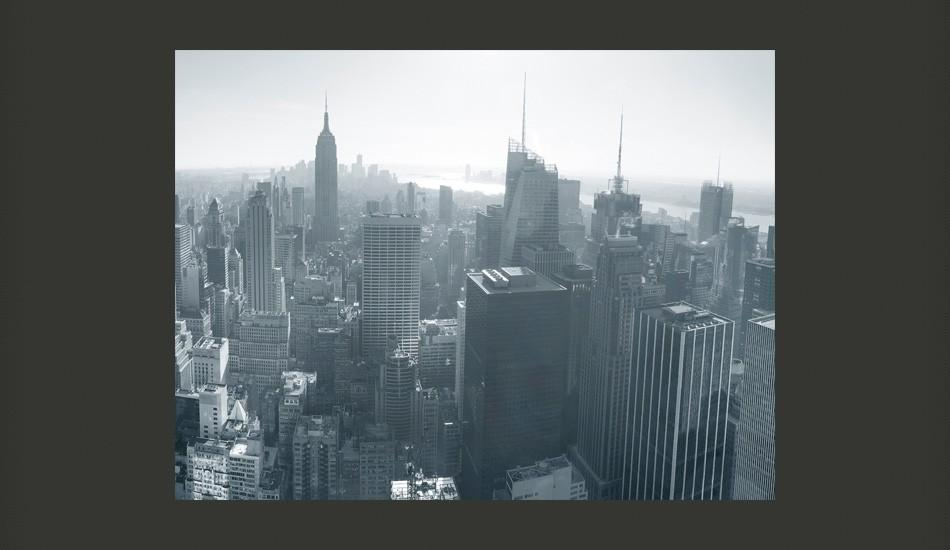 Fotomurale - Panorama Di New York In Bianco E Nero 250X193Cm Carta Da Parato Erroi