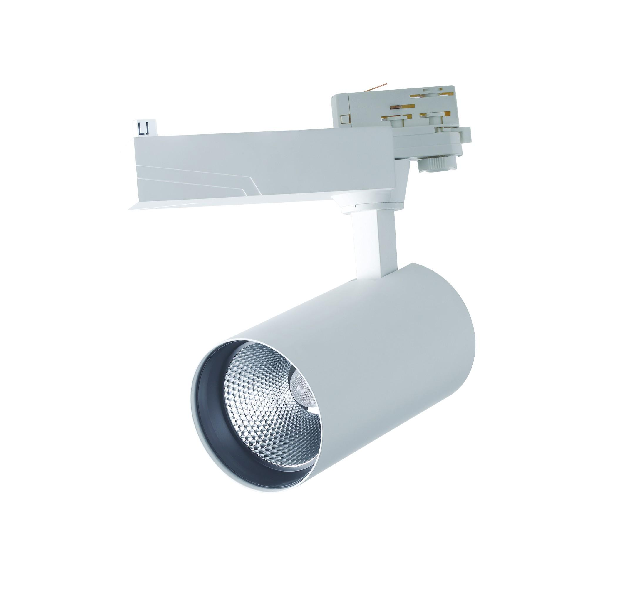 Faretto Binario Bianco Alluminio Pressofuso Led 40 watt Luce Naturale Intec LED-EAGLE-W-40WM