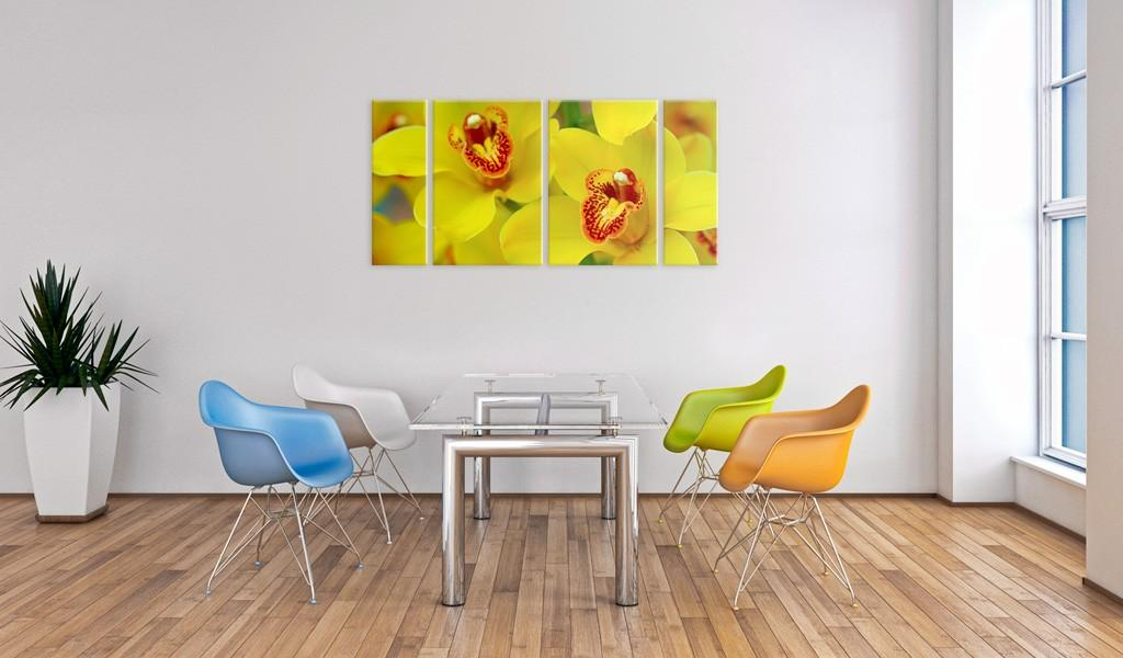 Quadro - Orchids - Intensity Of Yellow Color Erroi