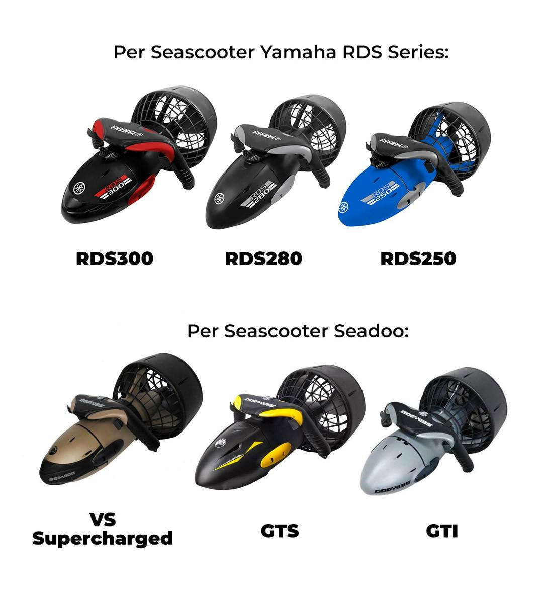 Caricabatterie per Seascooter Acqua Scooter Yamaha Serie RDS e Seadoo
